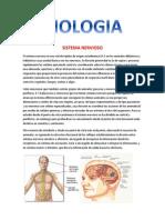 Biologia 10-b.docx