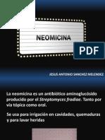 Neomicina.pptx