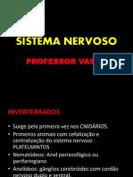 sistemanervoso-121016103412-phpapp01.ppt