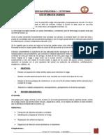 INFORME DE CISTOTOMIA.doc