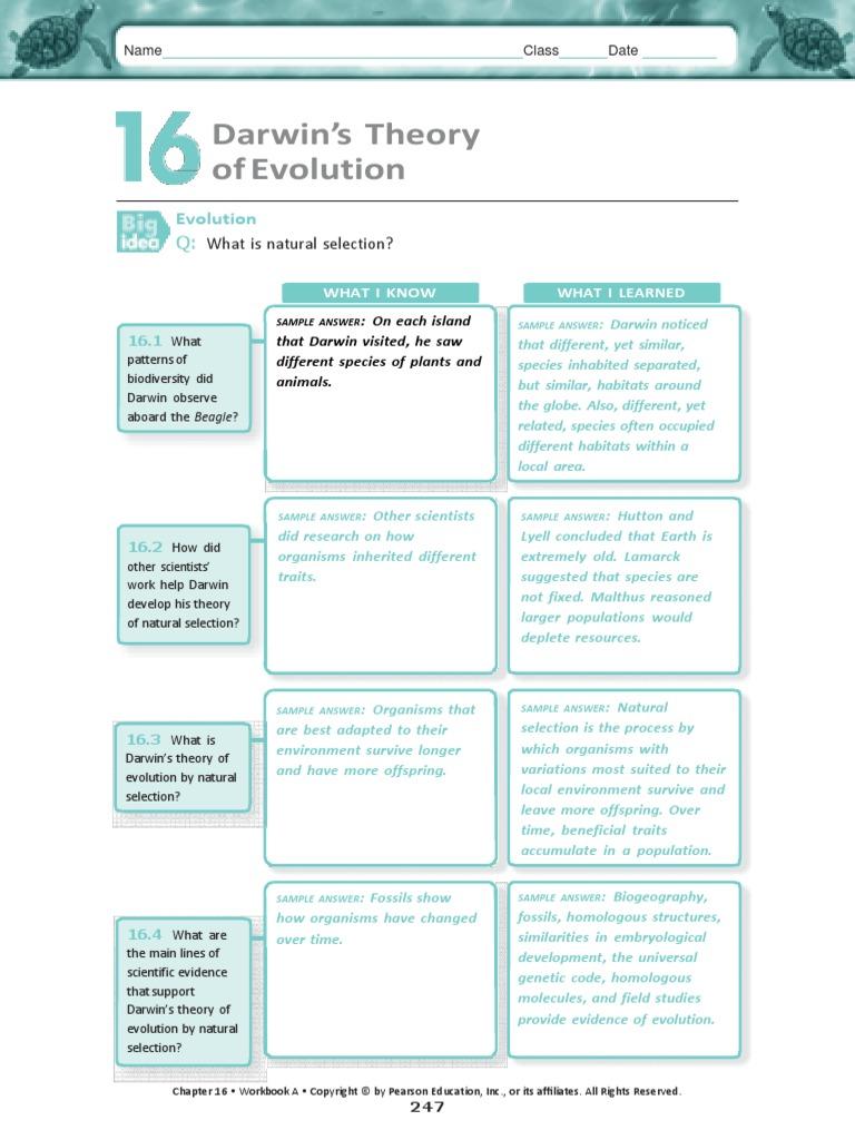 Pearson Evidence Of Evolution Worksheet - pearson evidence of ...