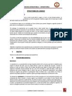 INFORME DE EPISIOTOMIA EN CANINOS.docx