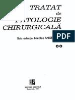 Angelescu_Vol_II.pdf