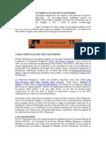 CARACTERÍSTICAS DEL NEO CALVINISMO.doc