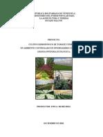 Proyecto Cultivo Hidropnico en Invernadero  Mi Recreo (1).doc