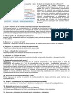 LISTA - AREA 01 - REOLOGIA E EXTRUSAO.pdf