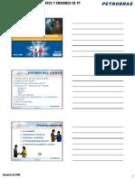 CURSO PT PETROBRAS.pdf
