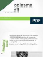 Toxoplasmosis Janet presentation.pptx