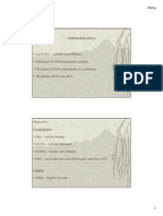 Lei_da_Balanca Topicos Principais.pdf