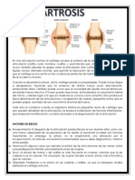 osteomusculares.docx