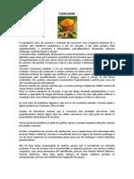 CURCUMA.docx
