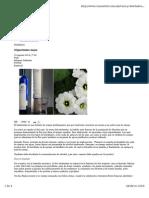 xtabentun.pdf