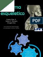 S. esqueletico..pptx