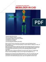 waermebilder_in_C4D.pdf