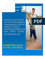 GAMITANA-PIURA.pdf