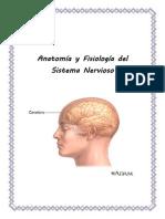 anatomia final.docx
