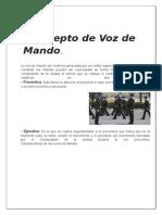Concepto de Voz de Mando.docx