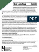 Vibrio vulnificus - Spanish.20051.pdf