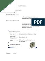 LA METODOLOGIA (1).docx