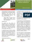 Resumen Determinantes del ML en Rda.pdf