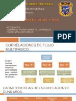 CORRELACION DE DUNS Y ROS.pptx