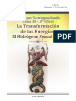 23_la_transformacion_de_las_energias_el_hidrogeno_sexual_si_12.pdf