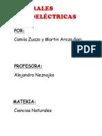 CENTRALES HIDROELÉCTRICAS.docx