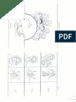 VOCABULARIO LSM.pdf