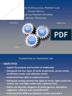 Class 1b Foundations of Trademark Law