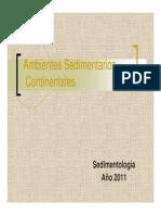 Ambientes Continentales-Sedimentologia 2011.pdf