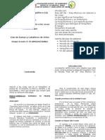 1.- Horquillero-Rover final.doc