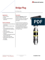 WCT Cast Iron Bridge Plug Technical Datasheet
