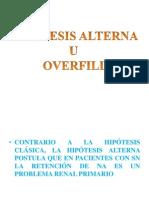 Overfill.pdf