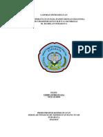 LP Urosepsis.docx