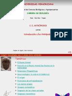 INTROD ARTROPODOS.pdf