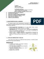 Qu¡mica del Carbono (General).Teor¡a y Ejercicios..pdf