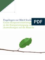 Fragebogen M&a 02-2011