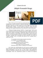 Salomão Rovedo - O múltiplo Fernando Braga.pdf