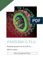 Pandemic Flu v1 1