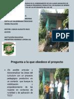 Presentación Proyecto Pedagógico -Productivo para Diplomado.pdf