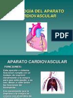 fisiologia cardiaca.ppt