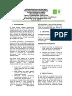 INFORME GUIA  ACIDO ACETICO.docx