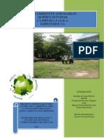 PROYECTO DE AULA  Etilvia Agricoloa grupo 2.docx