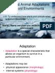 lesson2gcsecoldadaptations-120227105851-phpapp02