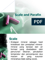 Scale and Parafin (2).ppt