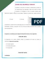 GENERALIDADES DEL DESARROLLO HUMAN1.docx