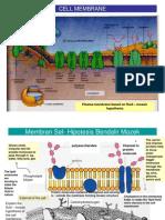 Biology Form 4 Notes ; Dinamic of Cells