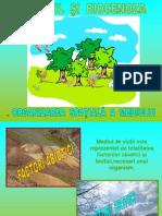 Biotopul si biocenoza.ppt