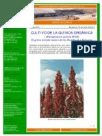 CULTIVO DE LA QUÍNOA ORGÁNICA.pdf