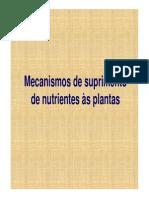 mecanismos de suprimento de nutrientes2.ppt [Modo de Compatibilidade].pdf